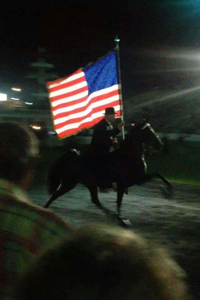 flag-horse1