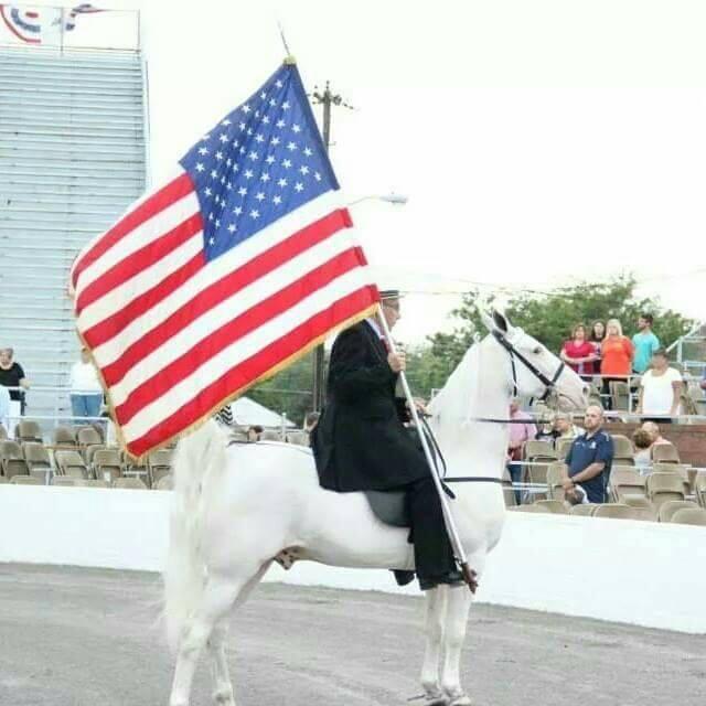 flag-horse